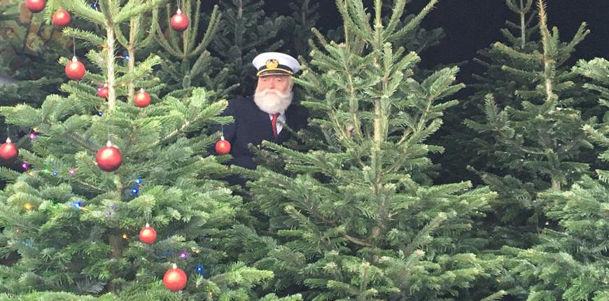 kapitein-kenneth-kerstbomen